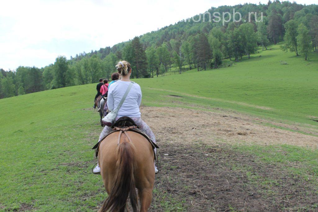 Подарить конную прогулку