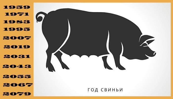 Год свиньи или кабана по китайскому гороскопу