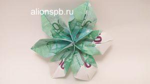 У денежного цветка отогнуть лепестки